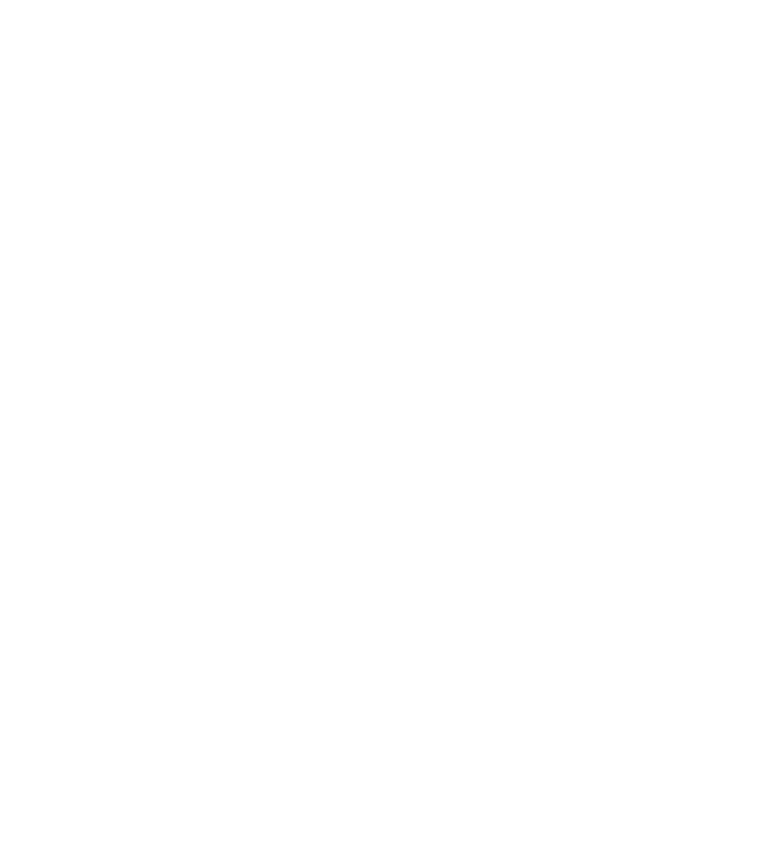 Fortem Australia logo stacked reverse